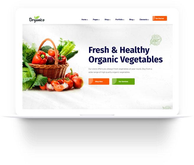 Desain Toko Online WordPRess Organico