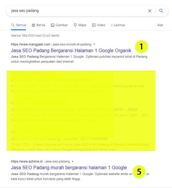 "portfolio Jasa PBN keyword ""Jasa SEO Padang"""